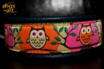 dogs-art Owl Martingale Leather Collar -dark blue/green/owl orange